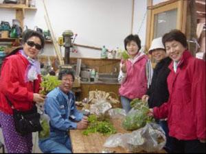 加工作業所で採ってきた山菜を鈴木さんに分別して頂く