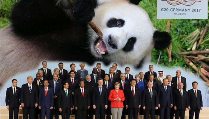 G20_PANDA